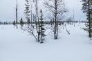 2016 Финляндия